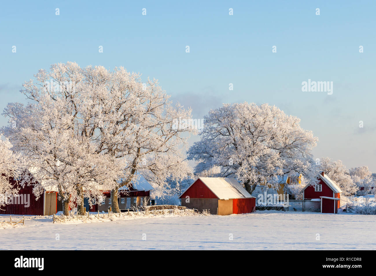 Farmhouse with frost and snow in the winter - Stock Image