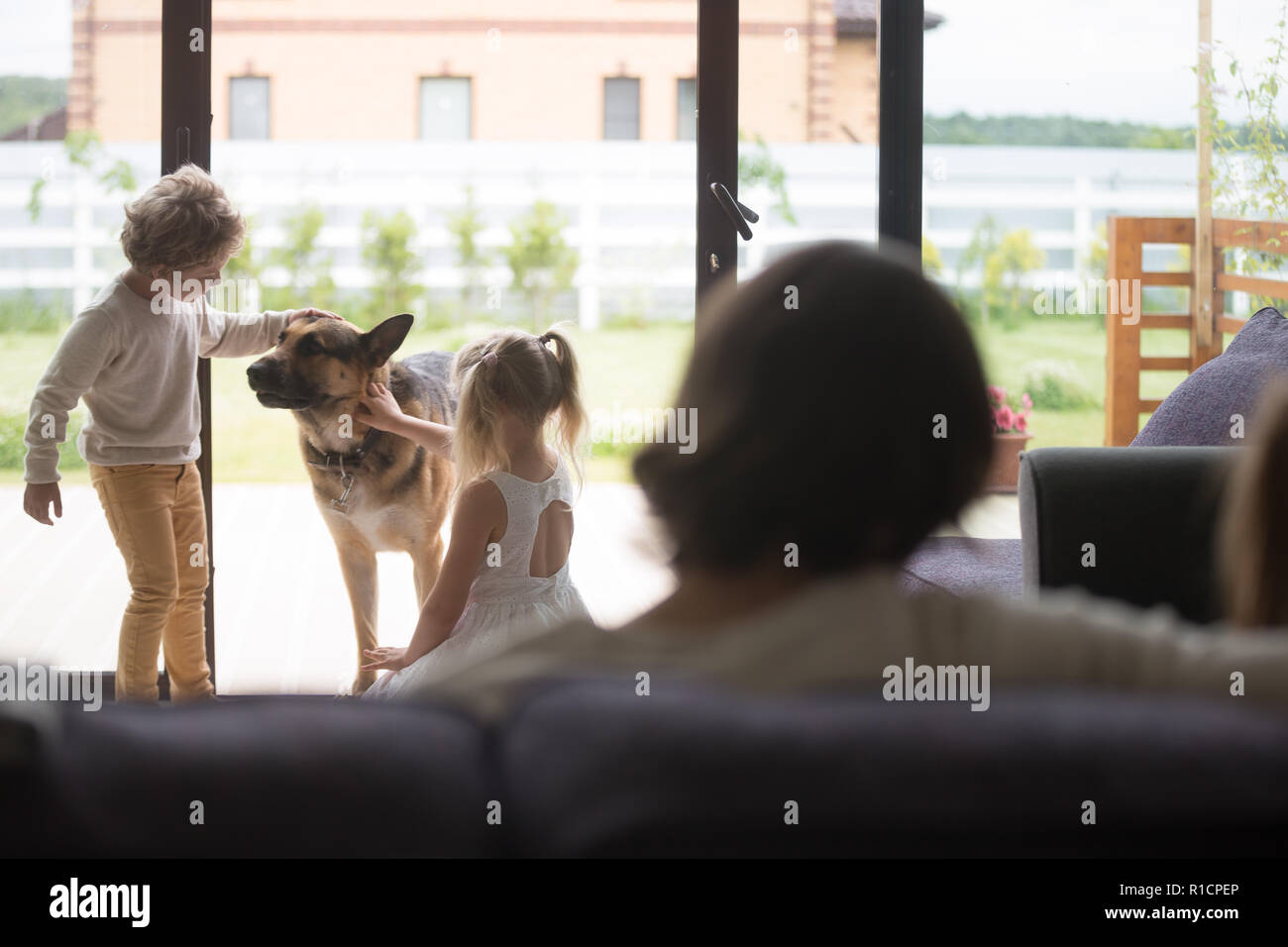 Little children playing with shepherd dog at home - Stock Image