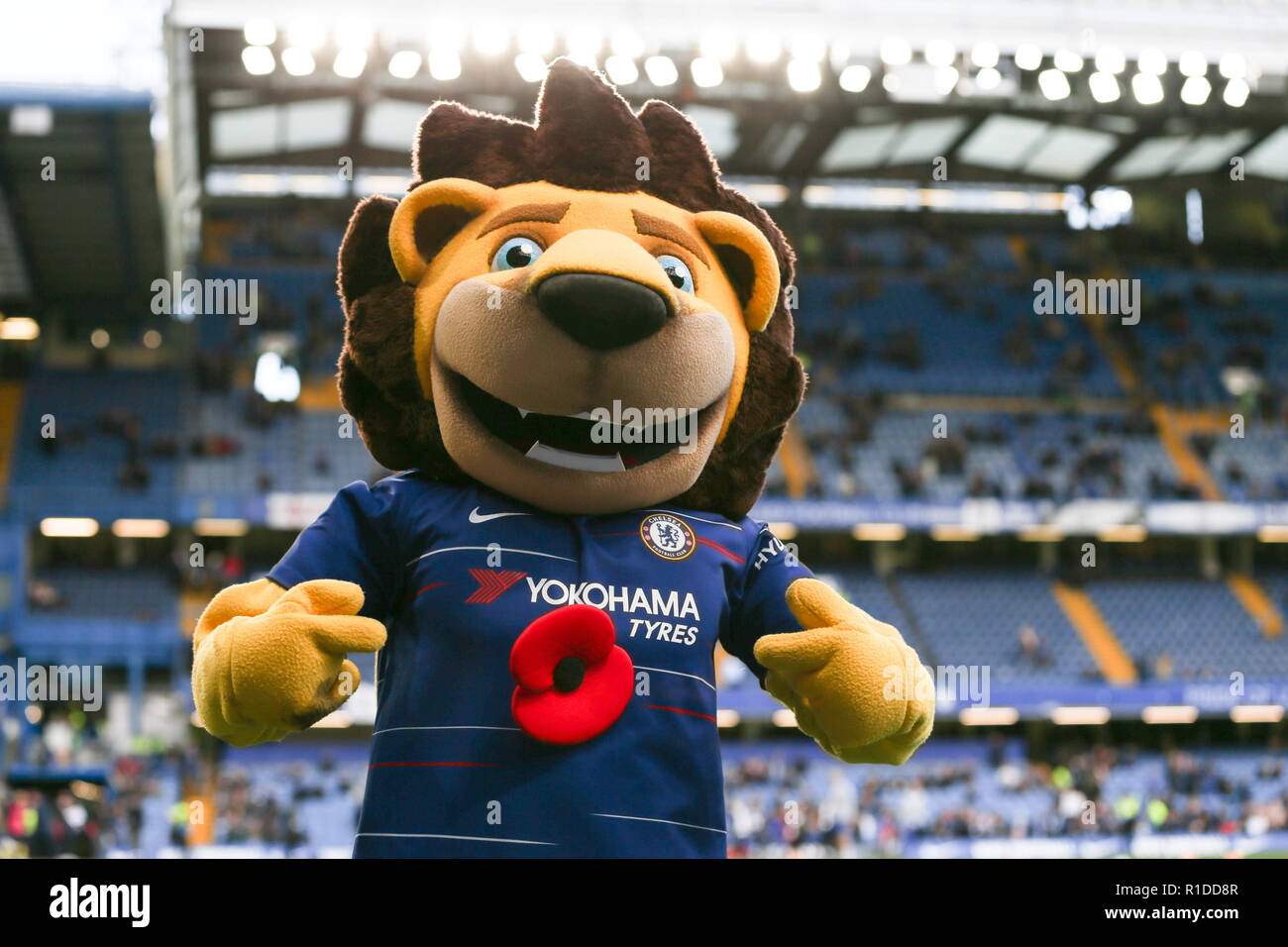 chelsea mascott stamford the lion wearing a poppy during the premier