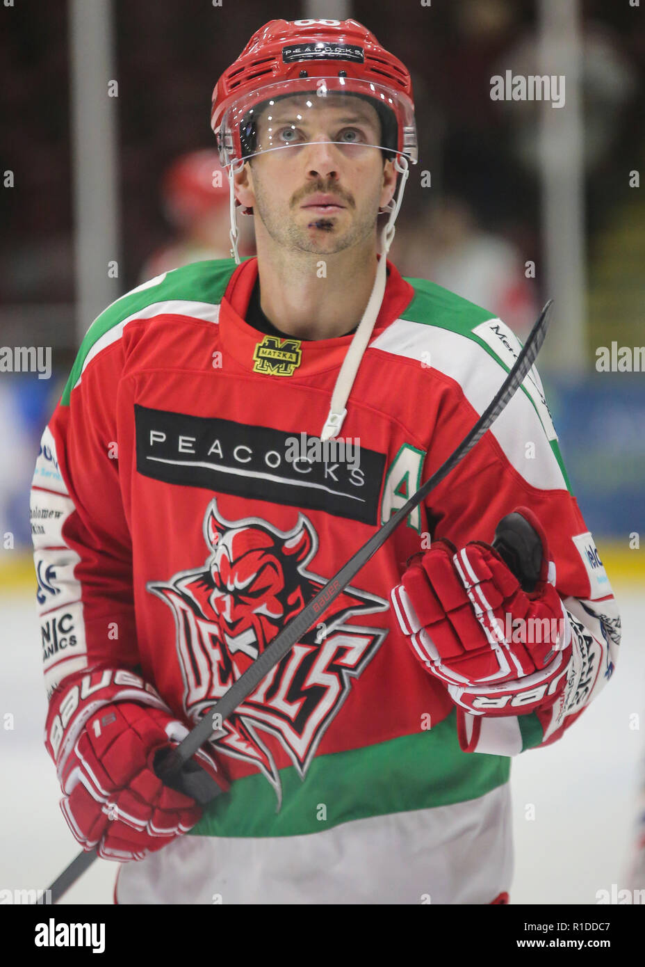 Ice Arena Wales, Cardiff. 11th November 2018. Fans enjoy home ice hockey game Cardiff Devils Vs Belfast Giants despite 1-8 outcome. - Stock Image