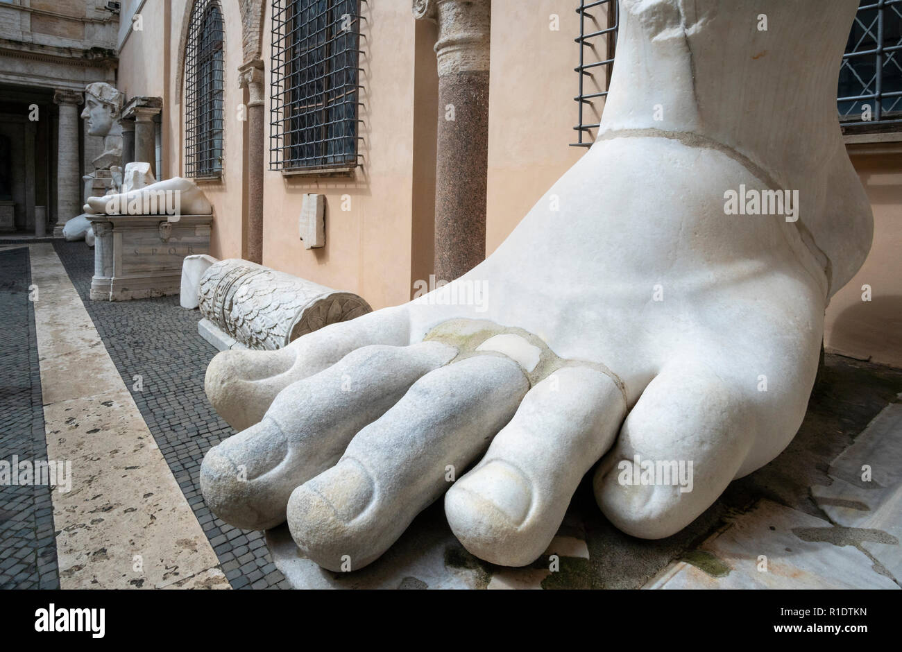 The left foot of the Colossus of Constantine in the courtyard of the Palazzo dei Conservatori, part of the Capitoline Museums,   Rome, Italy. - Stock Image