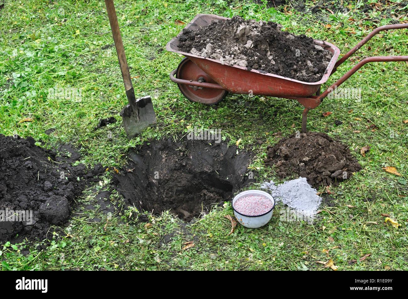 landing pit ready for planting fruit tree sapling, black earth,wheelbarrow,shovel,manure,fertilizer,ash - Stock Image