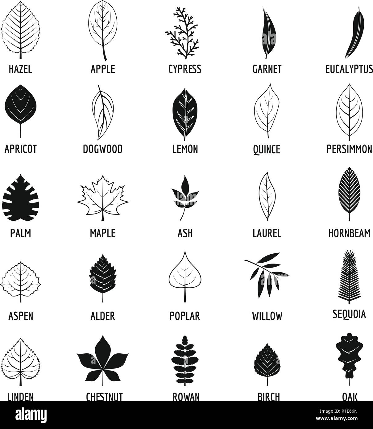 Leaf icons set. Simple illustration of 25 leaf vector icons for web Stock Vector
