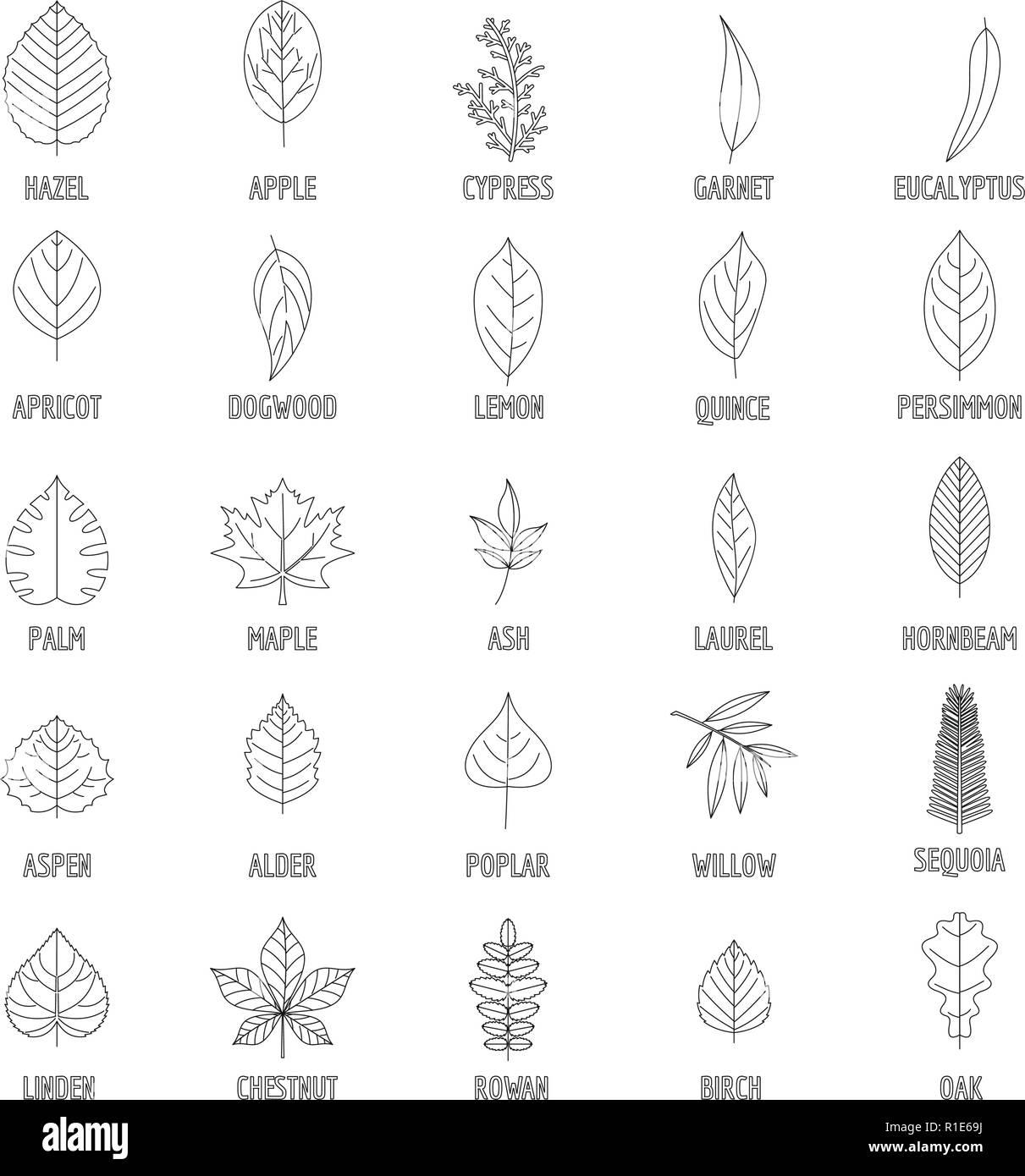 Leaf icons set. Outline illustration of 25 leaf vector icons for web - Stock Image