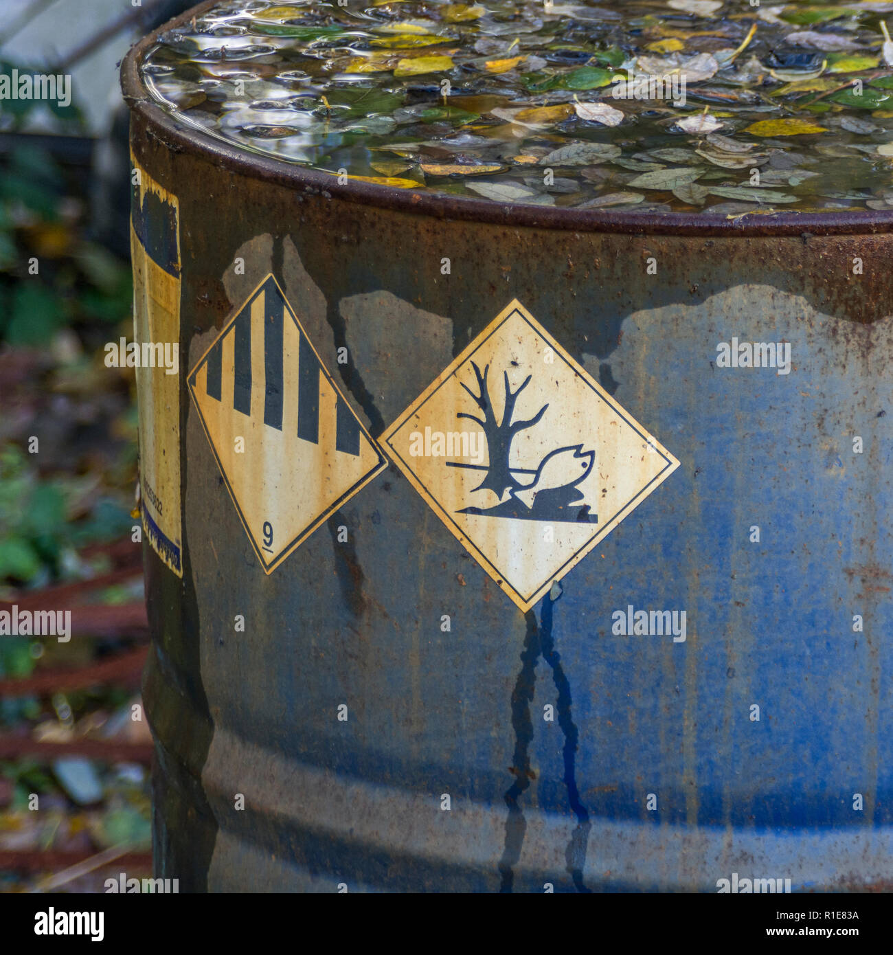 CHIP Hazardous to the Environments chemicals warning sign on industrial chemicals drum. - Stock Image