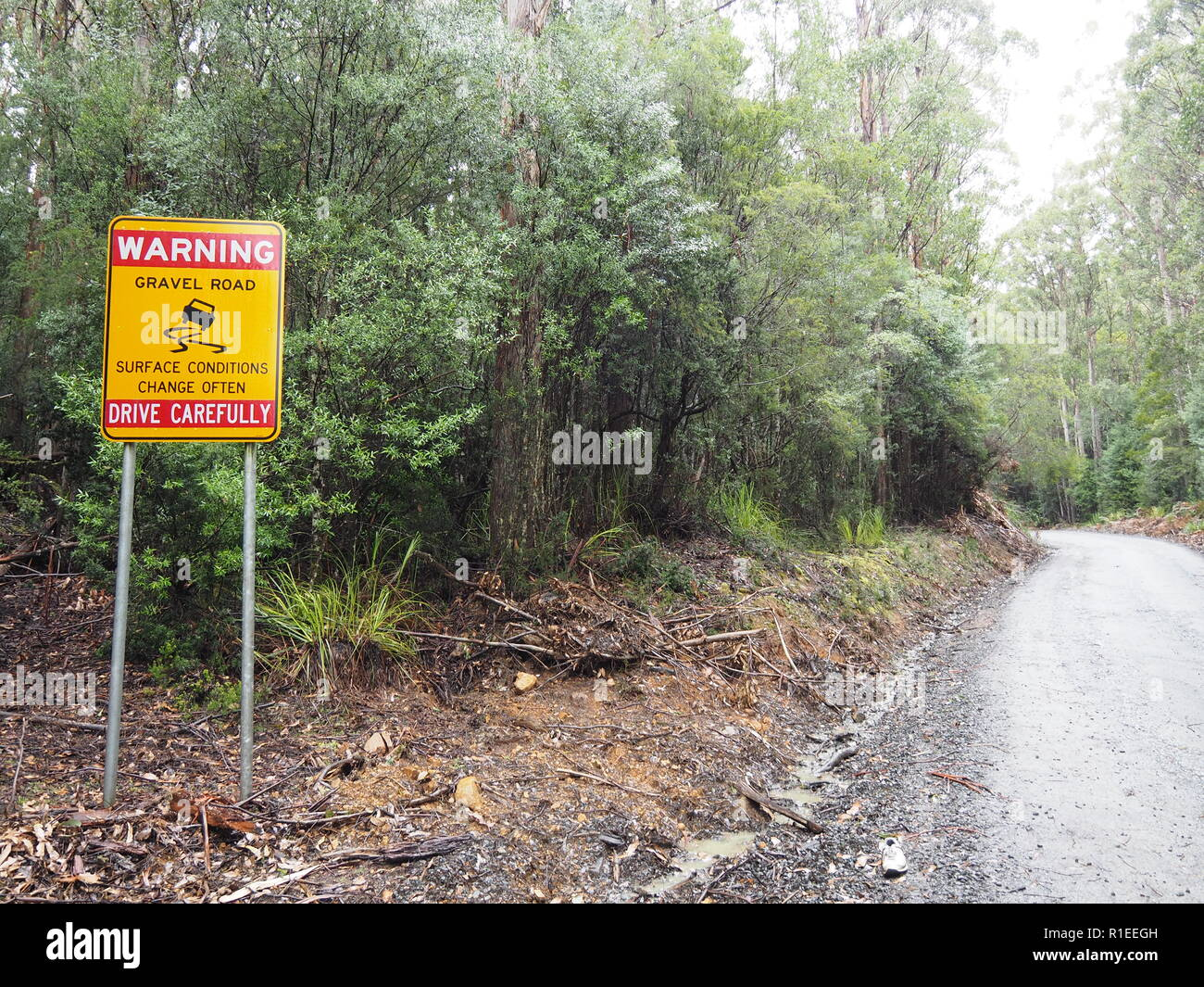 Mountain Road, Tasmania - Stock Image
