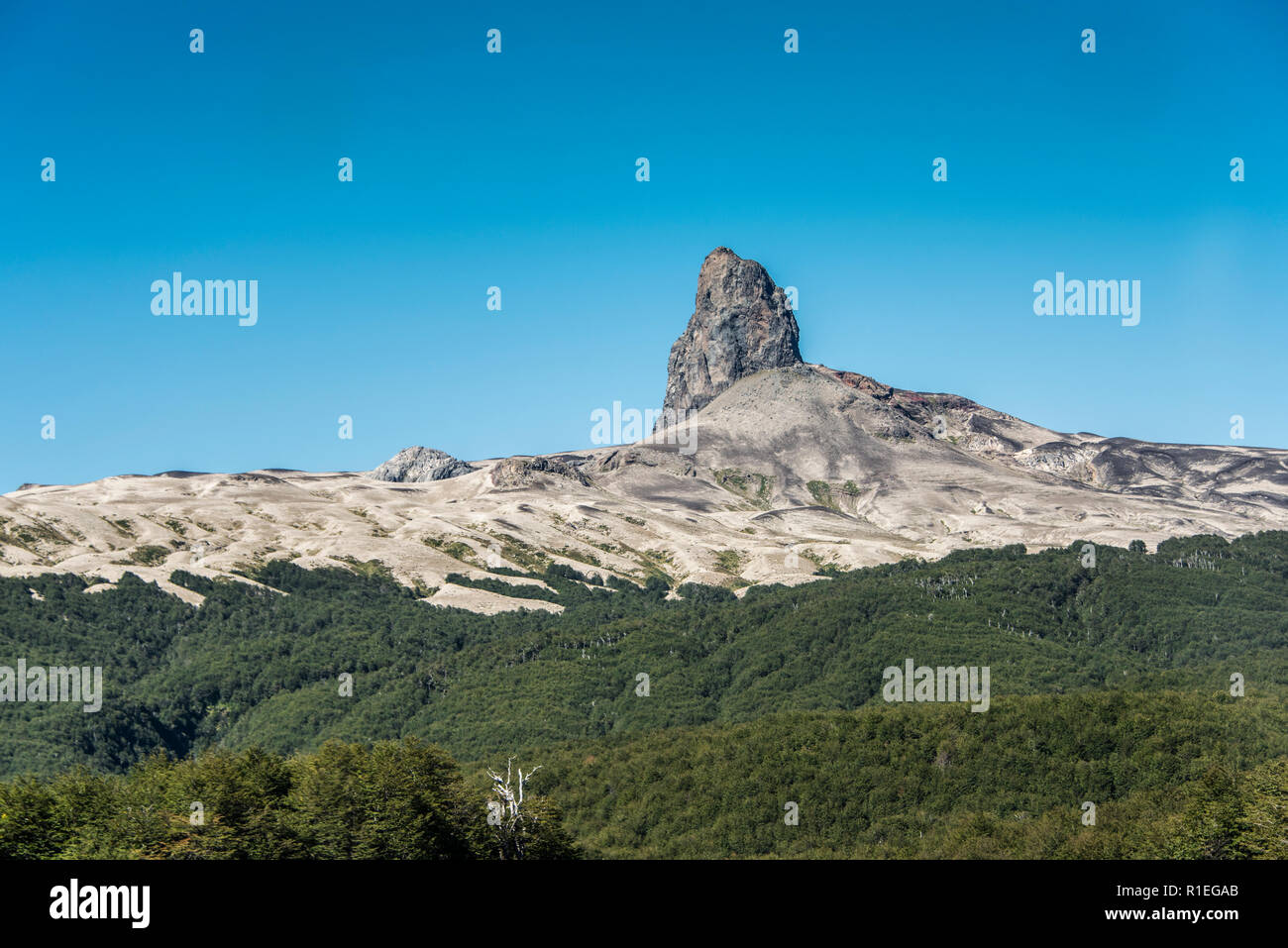 The rock in the Nahuel Huapi National Park at the Chile-Argentina border - Stock Image