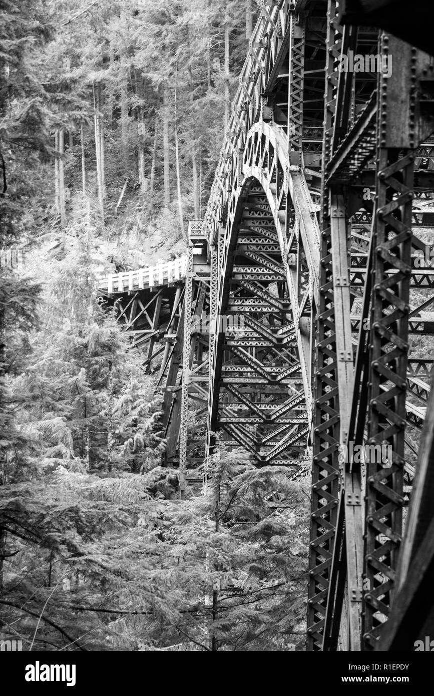 Old rusty bridge in the forest - Stock Image