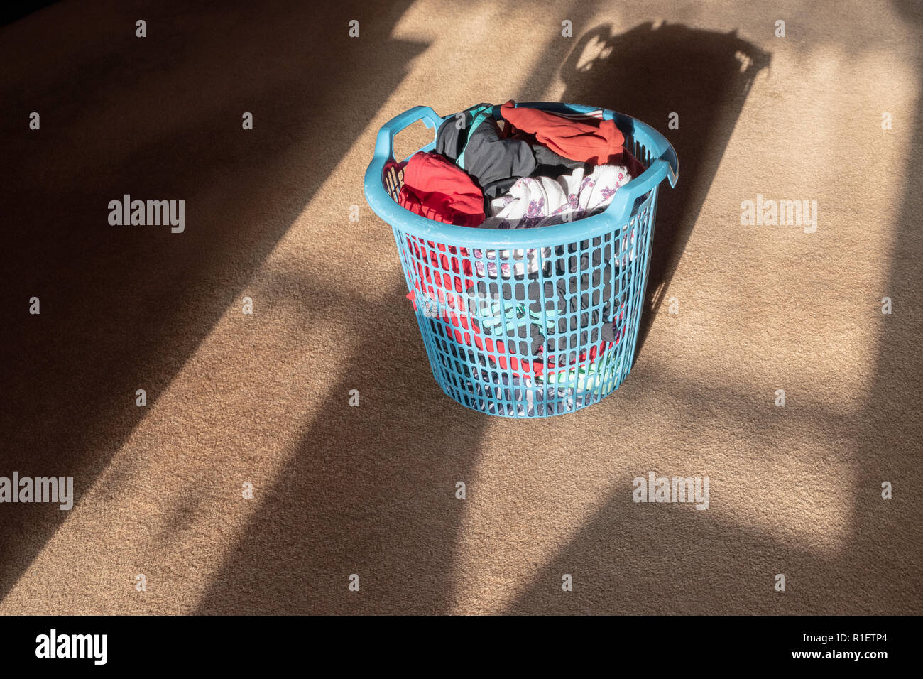 Freshly laundered clothing items inside a blue plastic clothes basket standing in the sunlight on a brown carpet - Stock Image