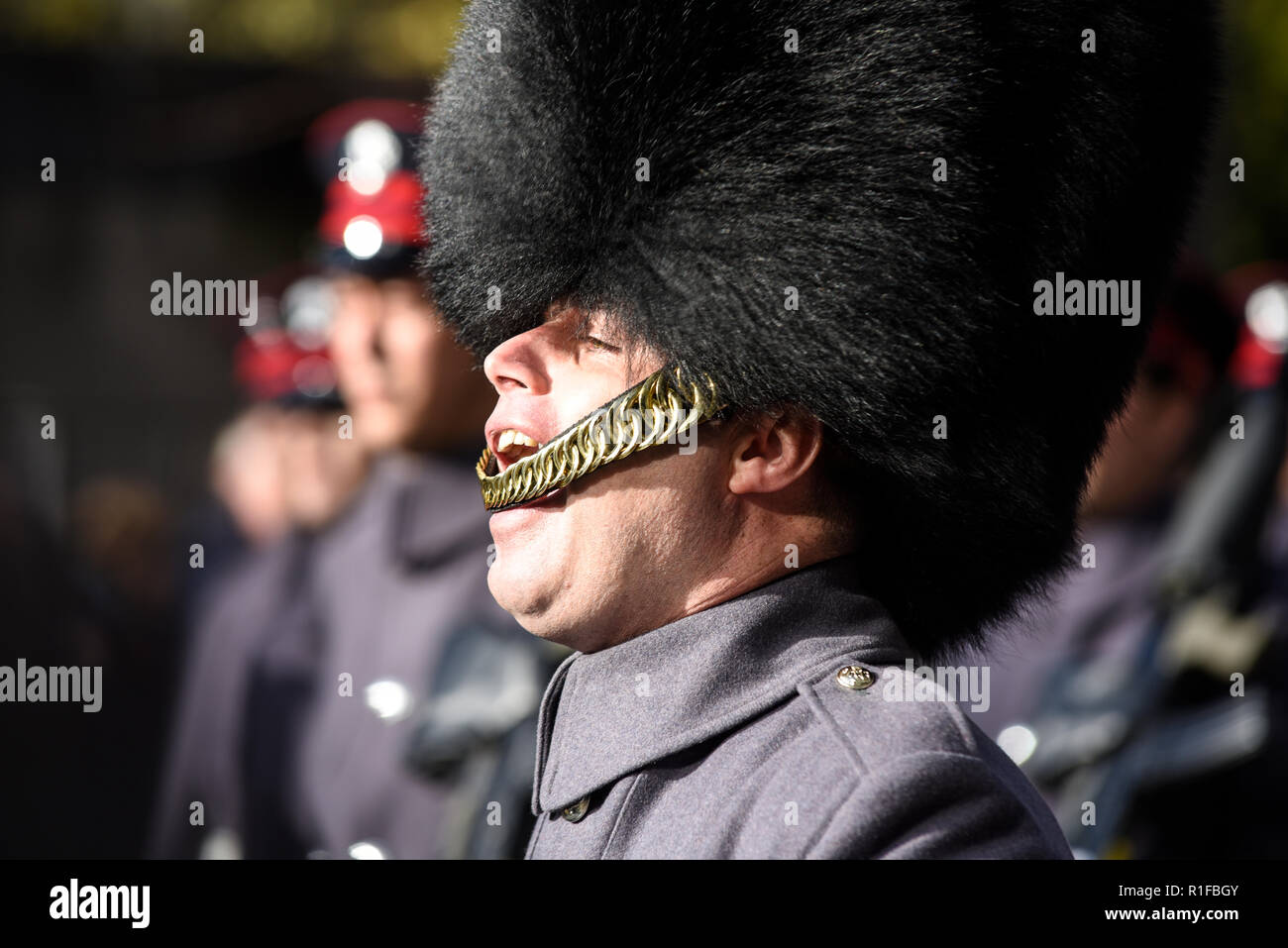 Officer of the Honourable Artillery Company of the British Army barking orders at the Lord Mayor's Show Parade, London, UK - Stock Image