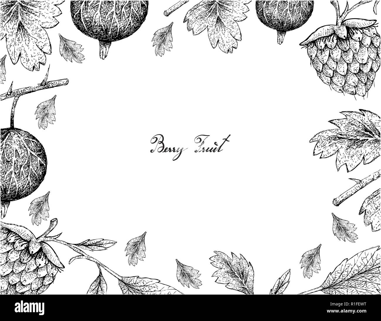 Berry Fruits, Illustration Frame of Hand Drawn Sketch Fresh Gooseberries and Golden Raspberries Isolated on White Background. - Stock Vector