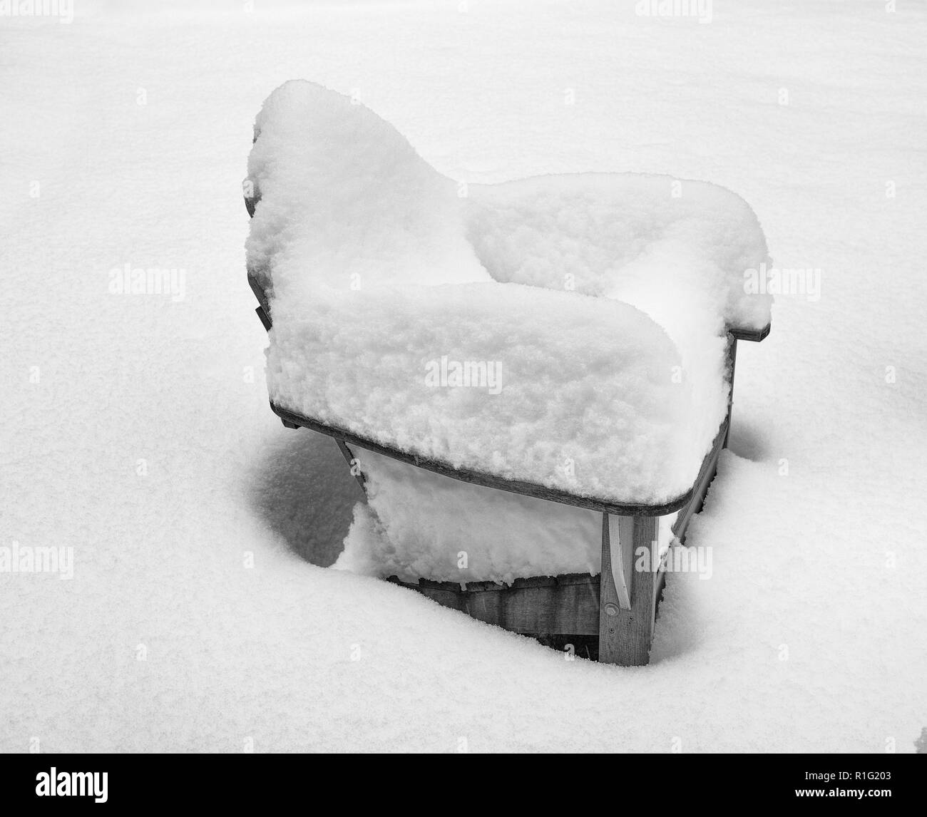 Adirondack lawn chair covered in fresh snow from winter storm. - Stock Image