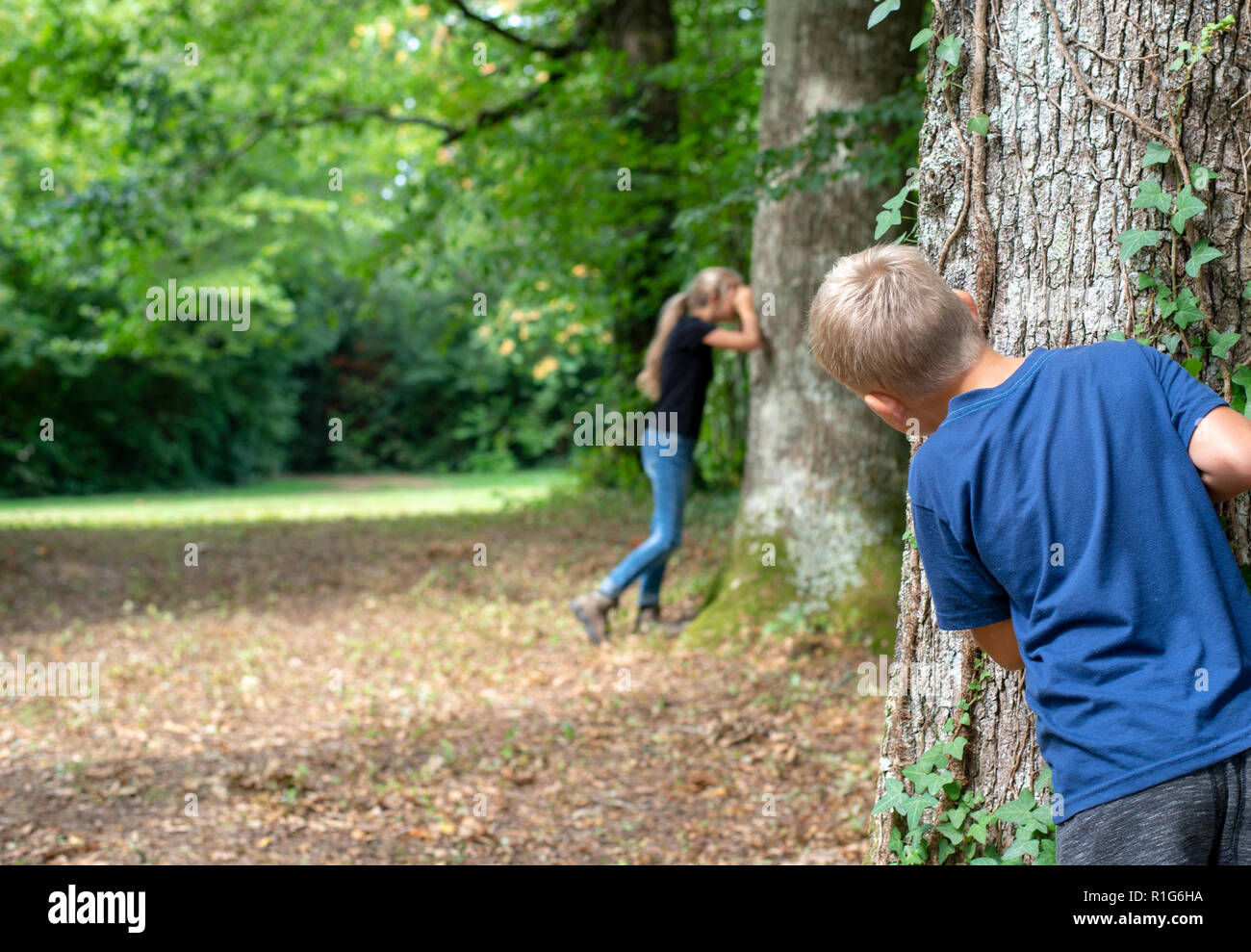 Young kids playing hide and seek in forest - Stock Image