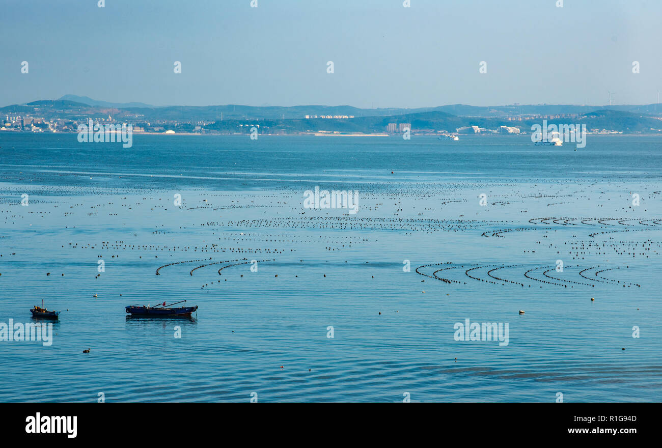 Shellfish and sea cucmber farming to the South of Changdao Island, Shandong, China. The mainland is in the distance. - Stock Image