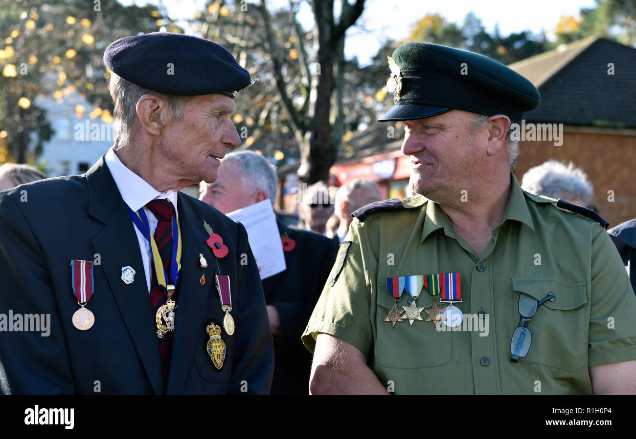 Remembrance Sunday, War Memorial, Bordon, Hampshire, UK. 11.11.2018. - Stock Image