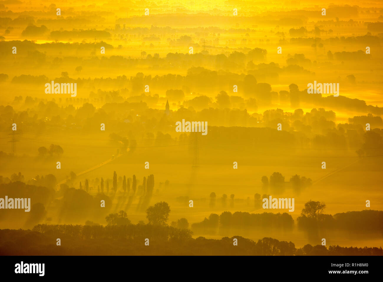 Landscape in the morning sun, staggered rows of trees, view from Hamm towards Welver-Scheidingen, Ruhr area - Stock Image