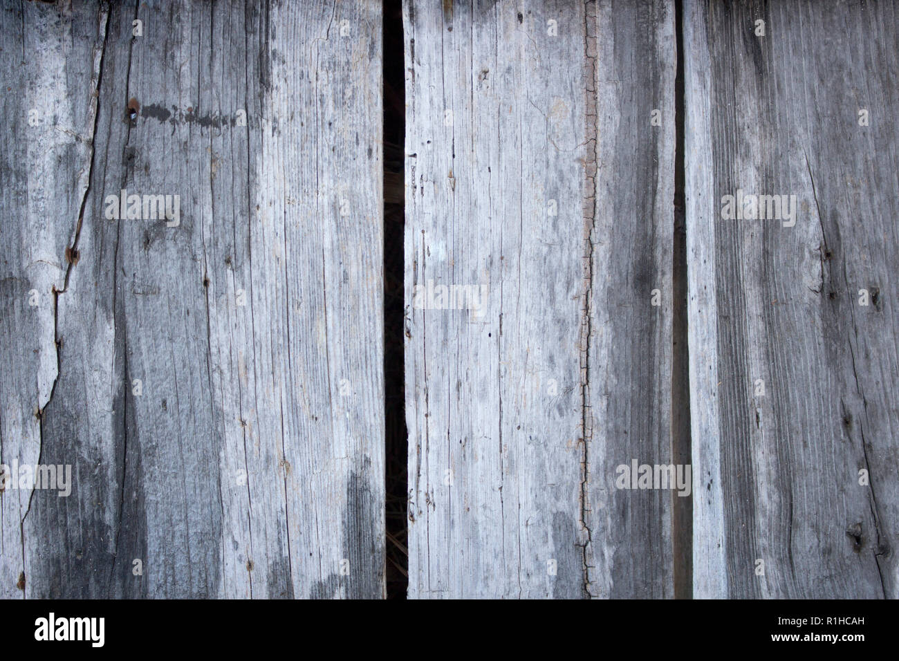 Dry, cracked and old wood planks. Gray wood texture background with an abandoned, grunge vibe. - Stock Image