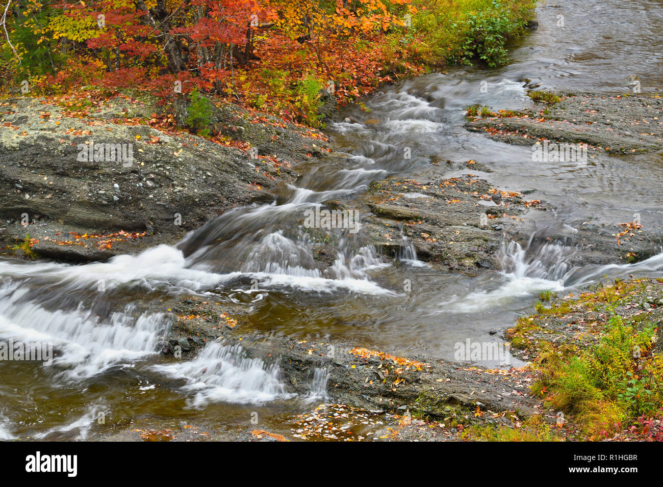 A babbling brook with colorful leaves adorning it's banks at Waterford near Sussex New Brunswick Canada. - Stock Image
