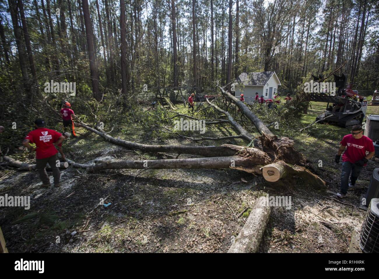 U.S. Marines of 2nd ANGLICO and Volunteers with Sheep Dog Impact Assistance organization remove branches and remains a fallen tree from an area impacted by Hurricane Florence in Wilmington, N.C. Sept 22, 2018. Sheep Dog is a non-profit organization of veterans and first responders aiding the community in disaster relief efforts through road clearings, home repairs and personnel evacuations. Hurricane Florence, with its heavy rain and strong winds, is the biggest storm to impact the Carolinas since Hurricane Floyd in 1999. - Stock Image