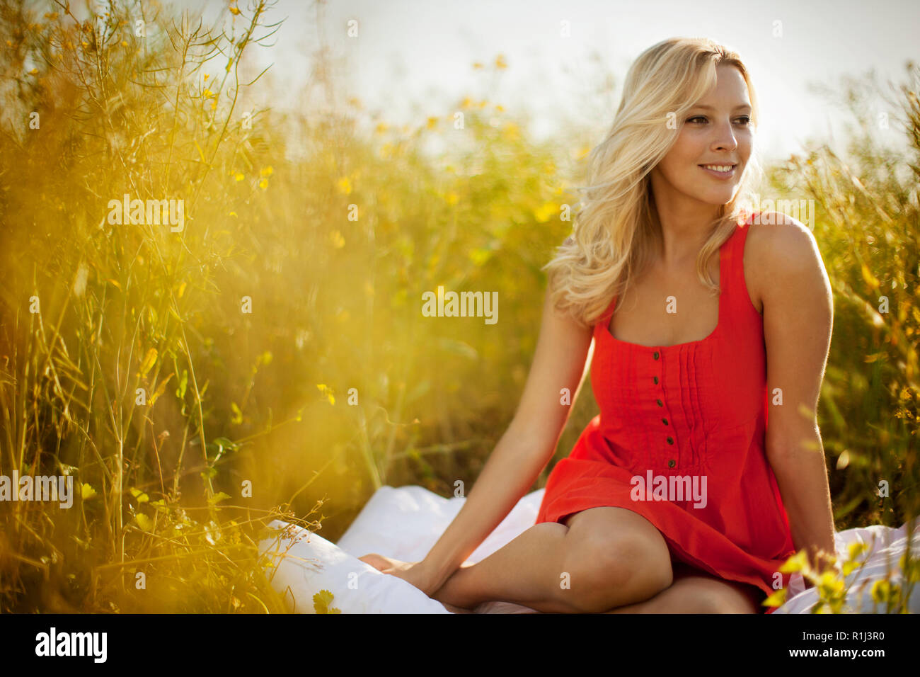 Smiling young woman sitting in a grassy meadow. Stock Photo