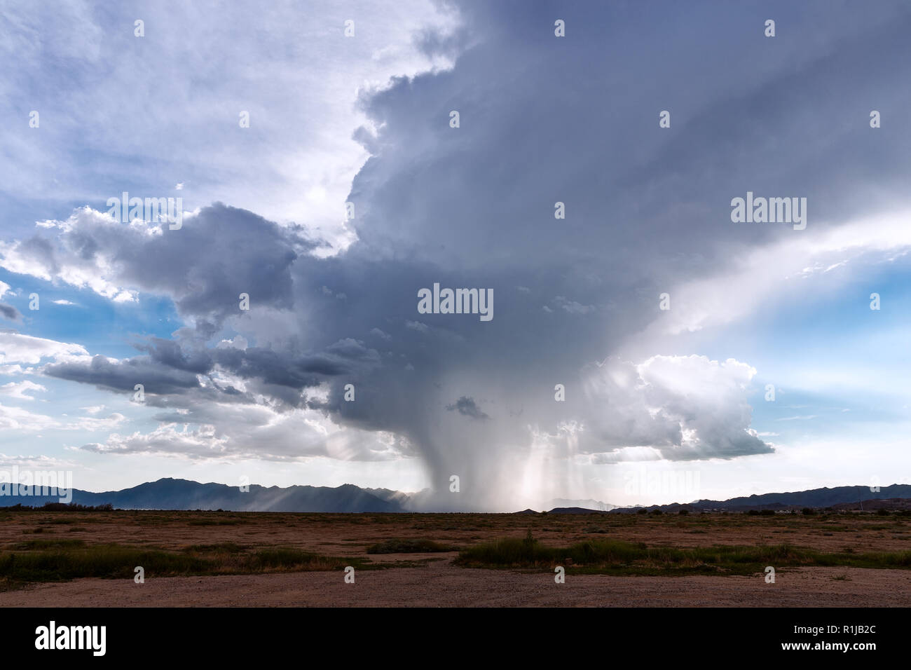Rain falling from a cumulonimbus thunderstorm cloud - Stock Image