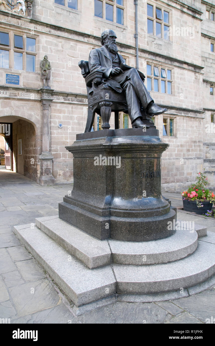 A statue of Charles Darwin at his old school now the Castle Gates Library in Shrewsbury, Shropshire, Britain.   Sir Philip Sidney, and  Judge Jeffreys - Stock Image