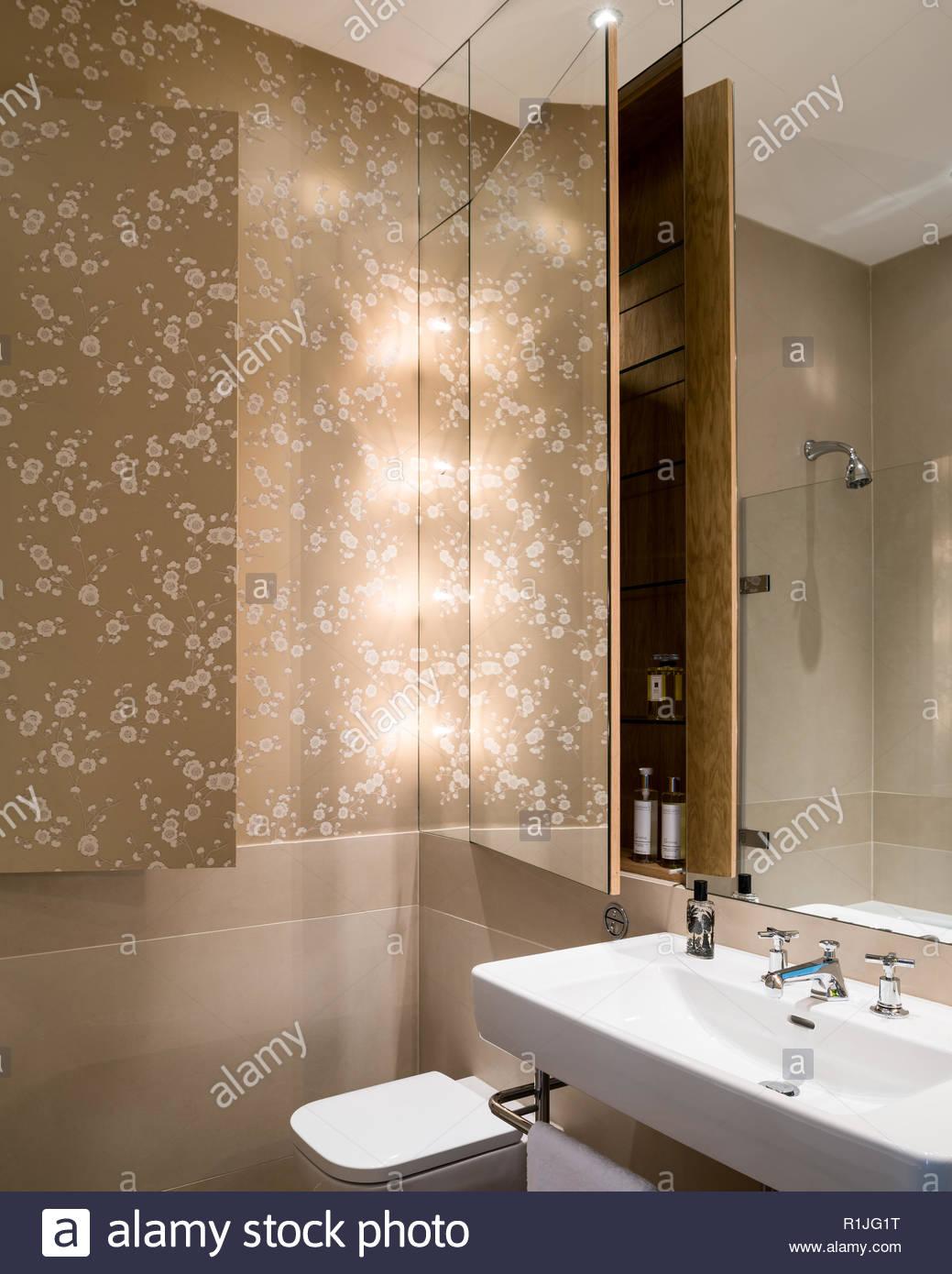 Concealed storage in bathroom - Stock Image
