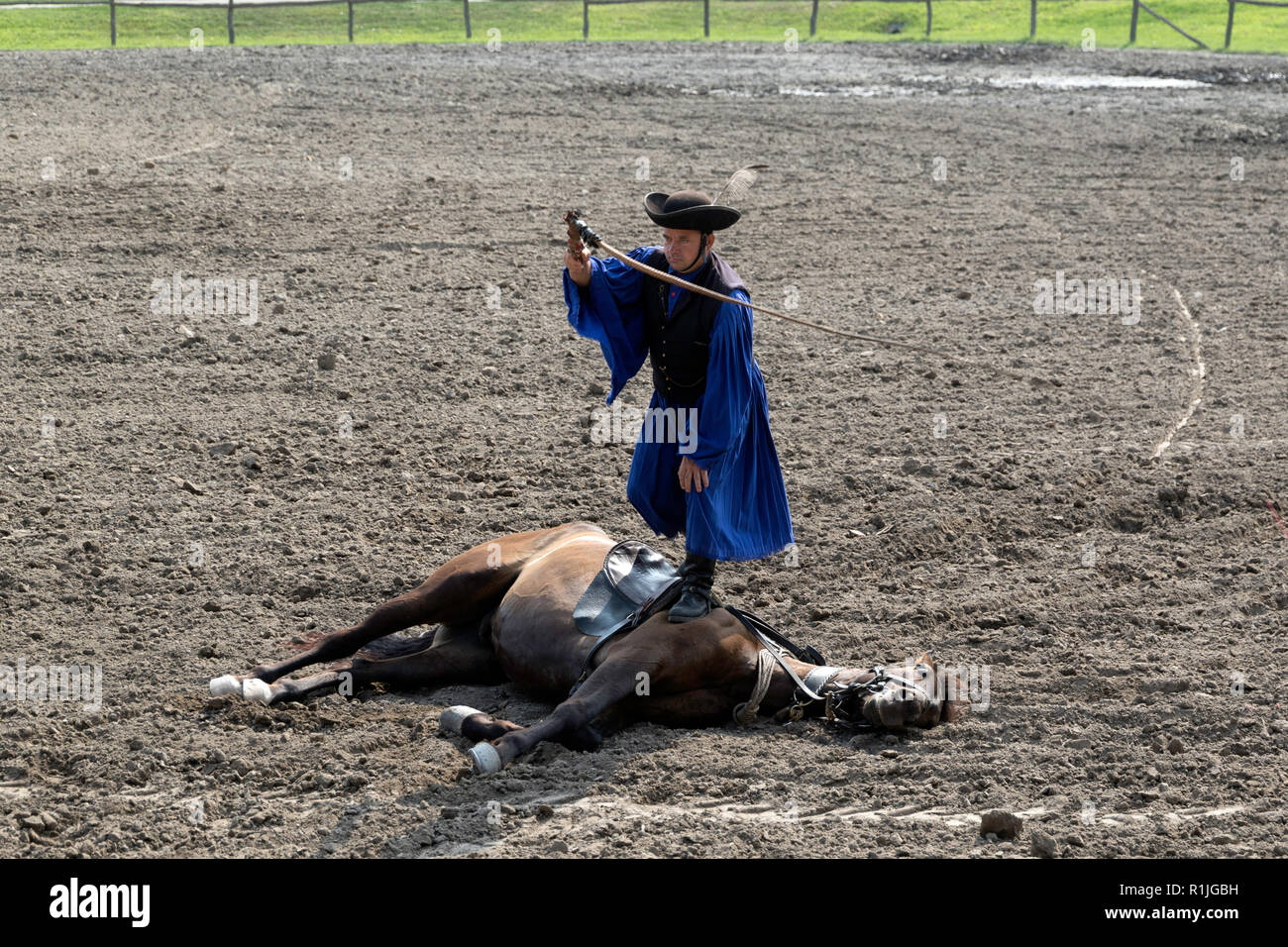 Equestrian show in the Puszta region of Hungary Stock Photo
