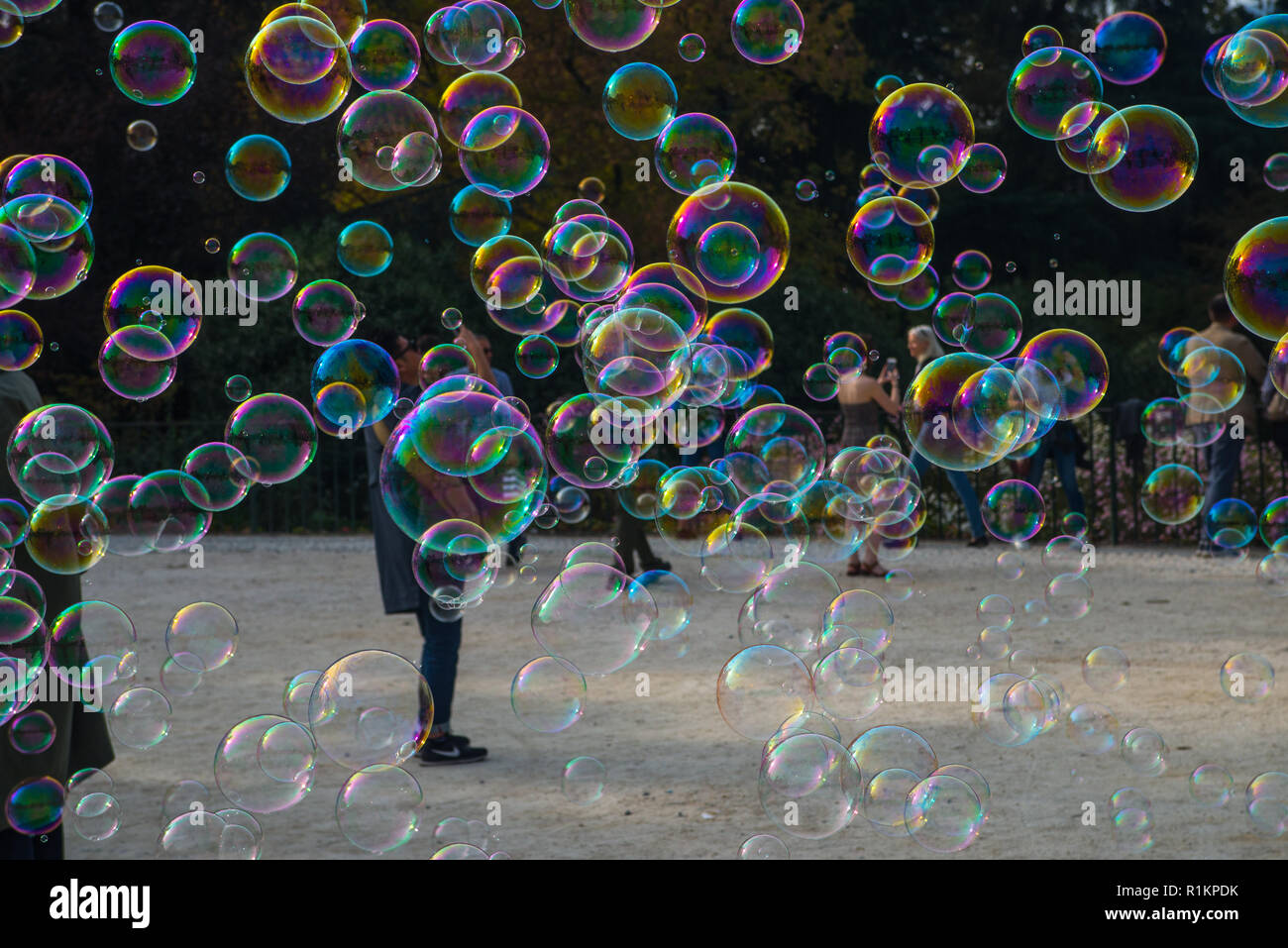 Soap bubbles floating in the air - Stock Image