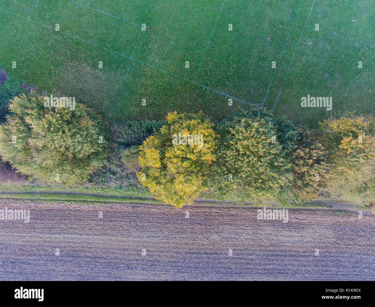 Looking down at tree tops in early autumn, park on one side, fields the other. Kent England - Stock Image
