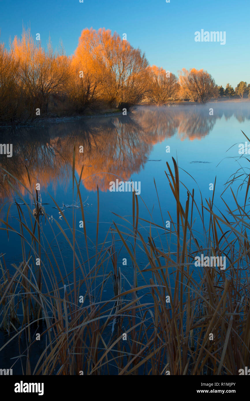 Reynolds Pond, Prineville District Bureau of Land Management, Oregon - Stock Image