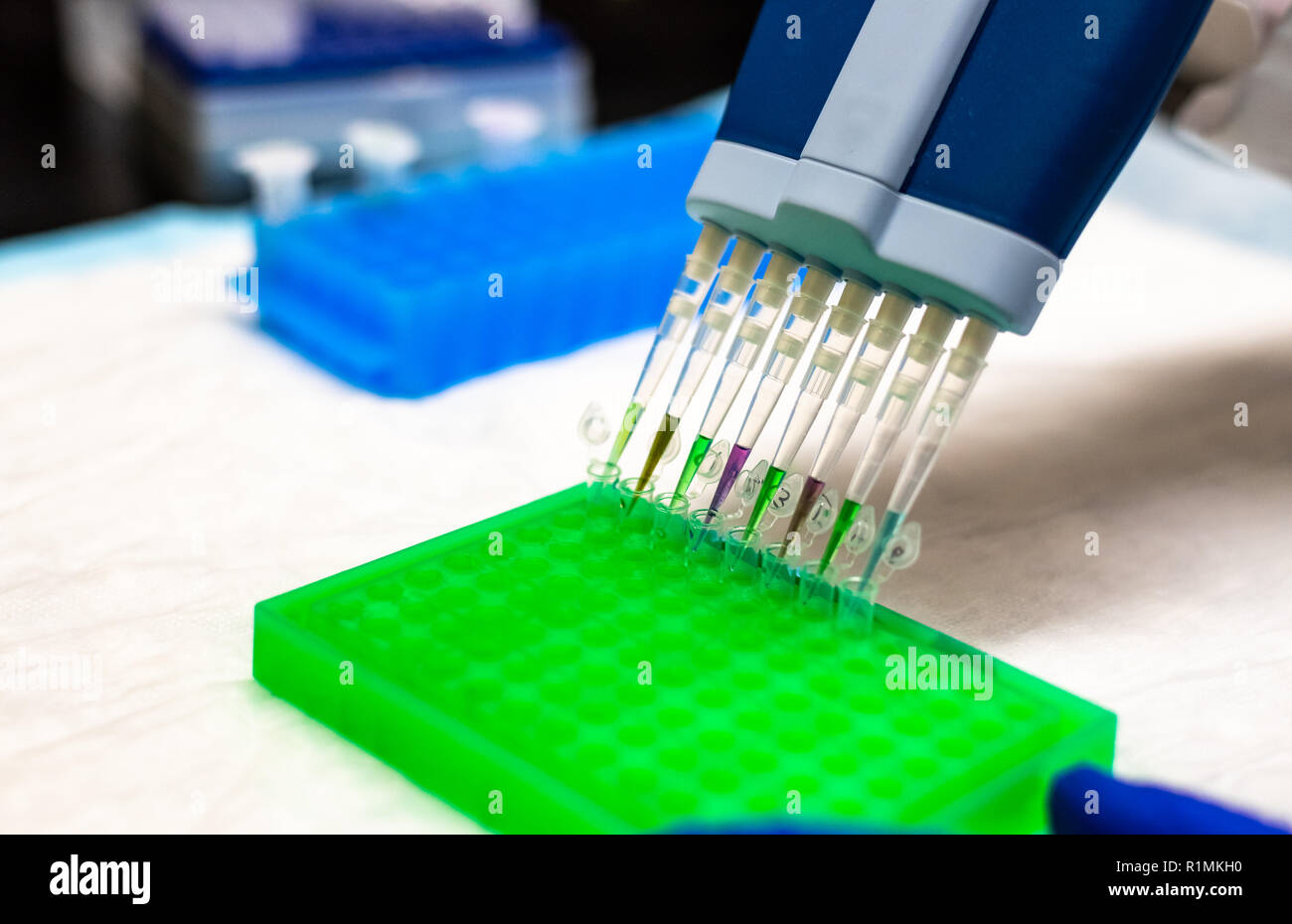 Biomedical research in biotechnology laboratory Stock Photo