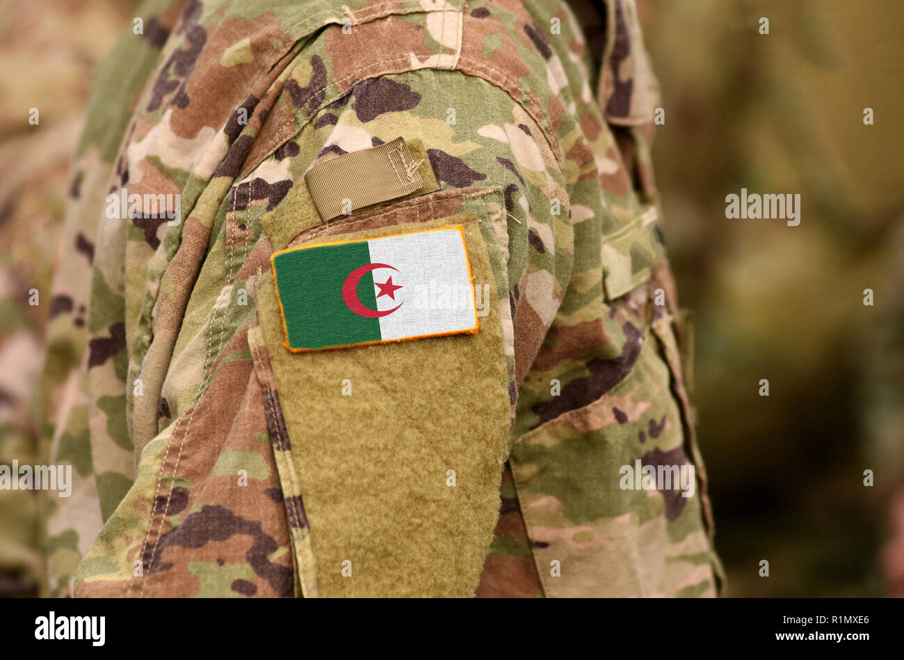 Algeria flag on soldiers arm. People's Democratic Republic of Algeria troops (collage) - Stock Image