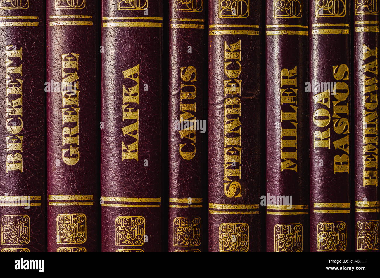 Classic writers' books of the 20th century, room for text - Stock Image
