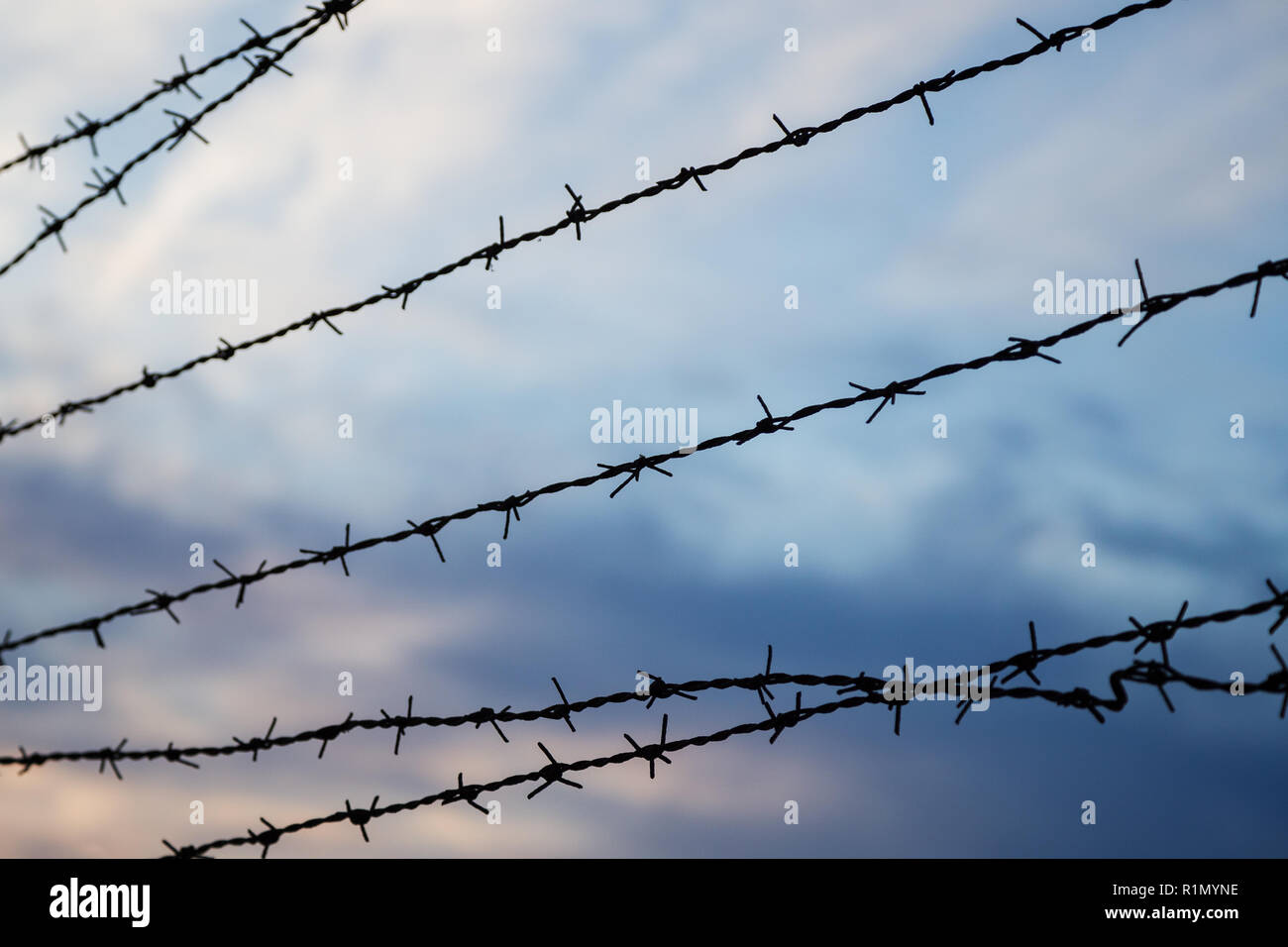 Silhouette of barbed wire fence against blurry cloudy sky in the evening. Focused on the foreground. - Stock Image