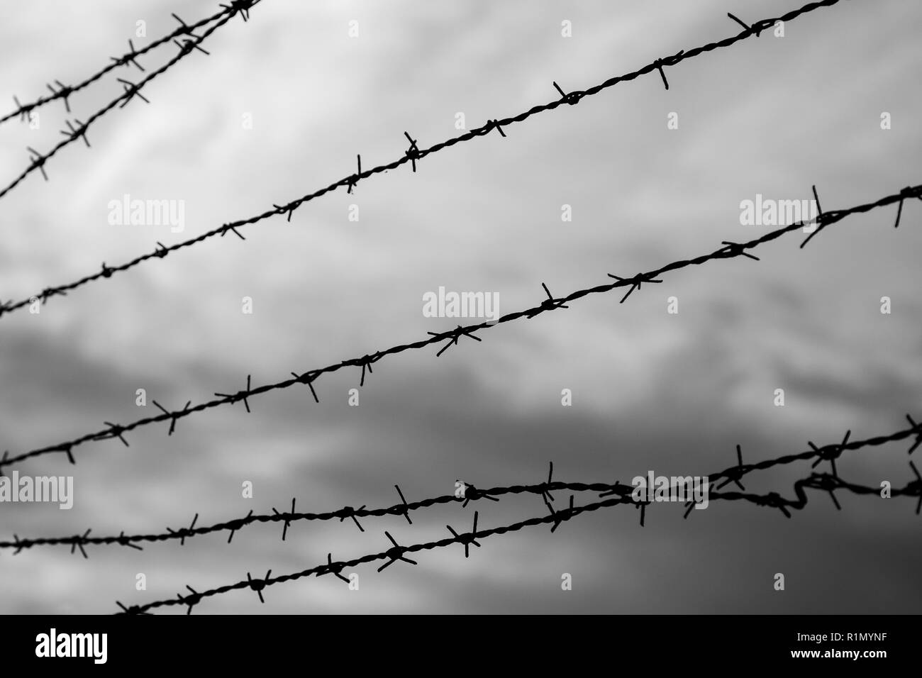 Silhouette of barbed wire fence against blurry cloudy sky in the evening in black and white. Focused on the foreground. - Stock Image