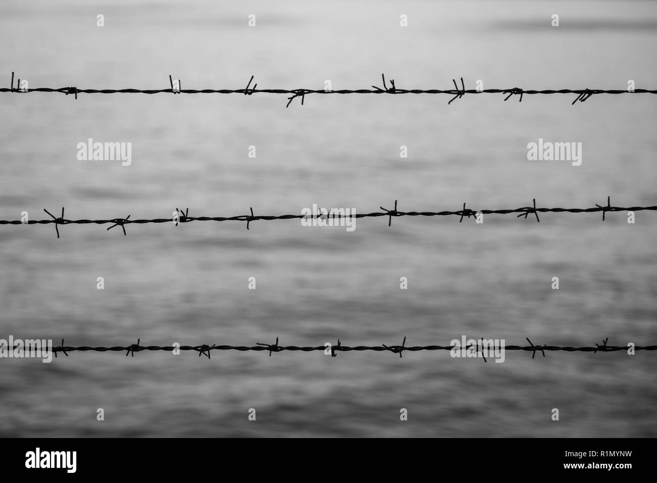 Silhouette of barbed wire fence against blurry water in the evening in black and white. Focused on the foreground. - Stock Image