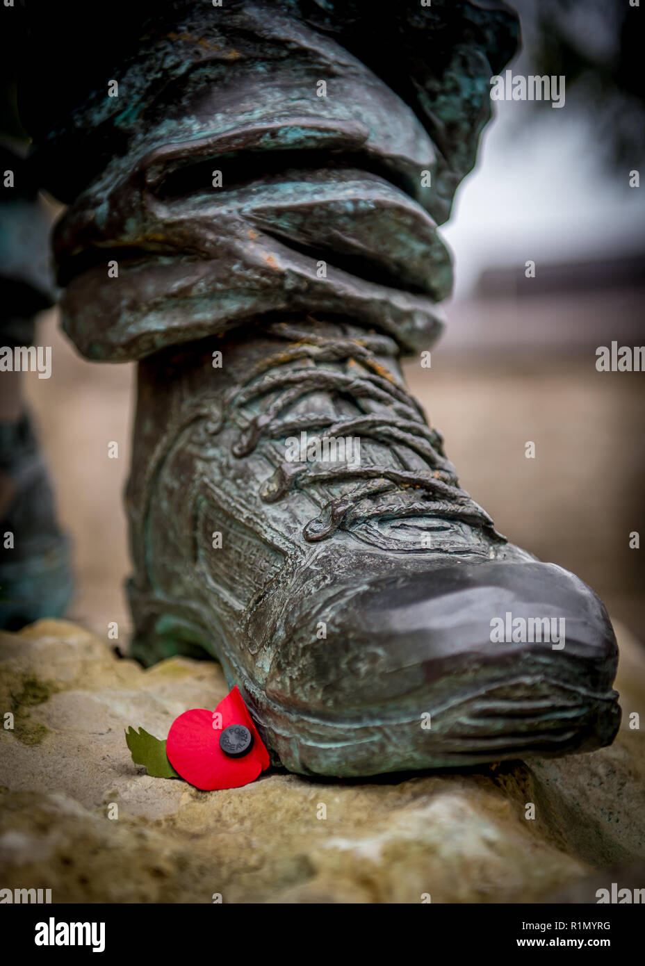 A Poppy left at solider statue memorial in Windsor to mark Armistice Day & Remembrance of the fallen soldiers in the World Wars - Stock Image