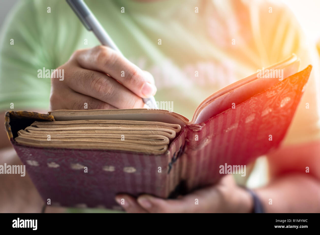 A young successful person taking notes in a personal journal - Stock Image