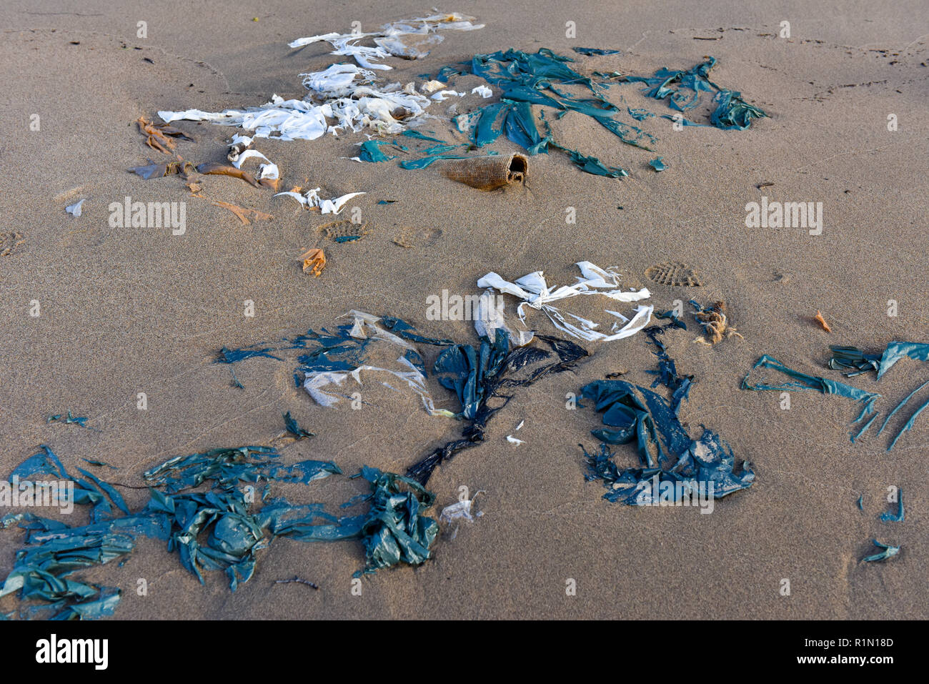 Waste on a beach , Northern Quebec Stock Photo