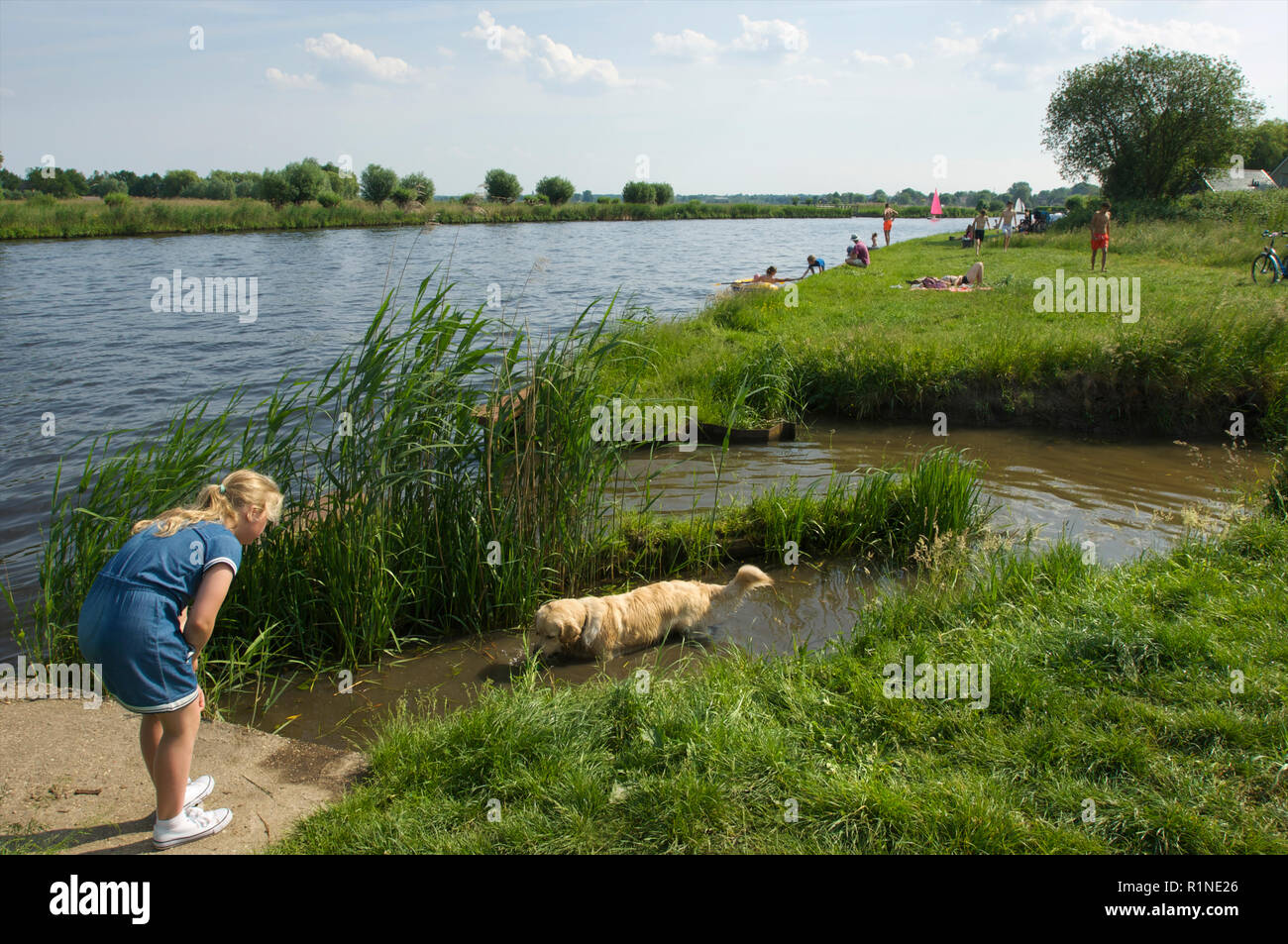 Young girl on a warm summer day trying to get her dog to come out of the water of the canal de Eem where it is cooling down, the Netherlands - Stock Image