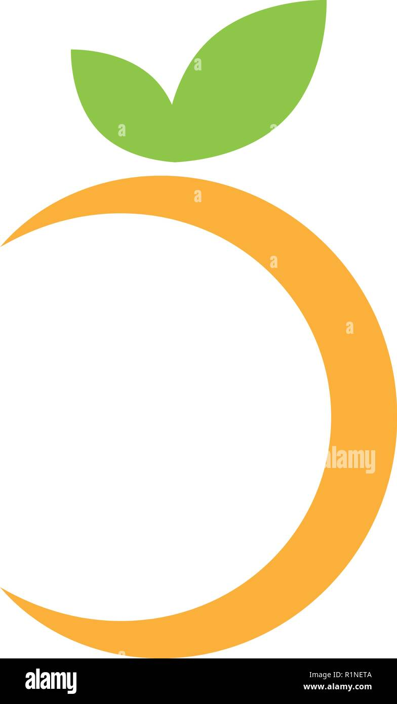 Abstract Orange Fruit Graphic Design Template Vector