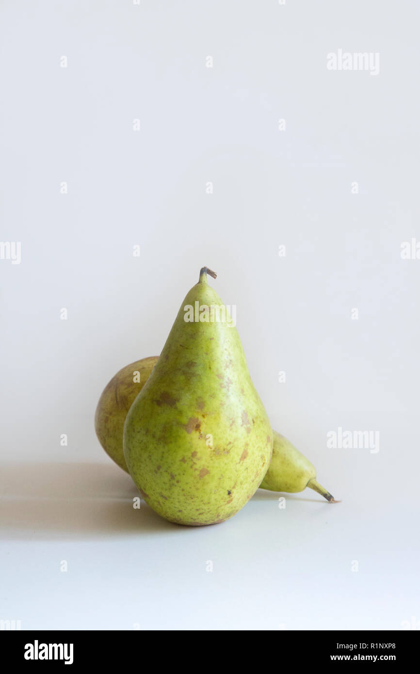Two green pears sitting on a white background in soft lighting with shadow - Stock Image