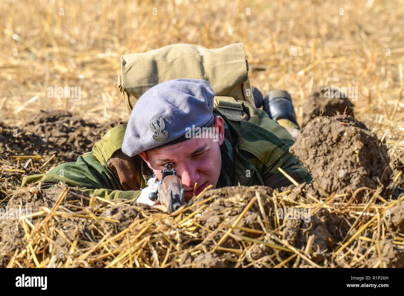 Second World War soldier re-enactment. Young British Army soldier laying prone with rifle. Looking through gunsight, gun sight. Weapon. Aiming - Stock Image