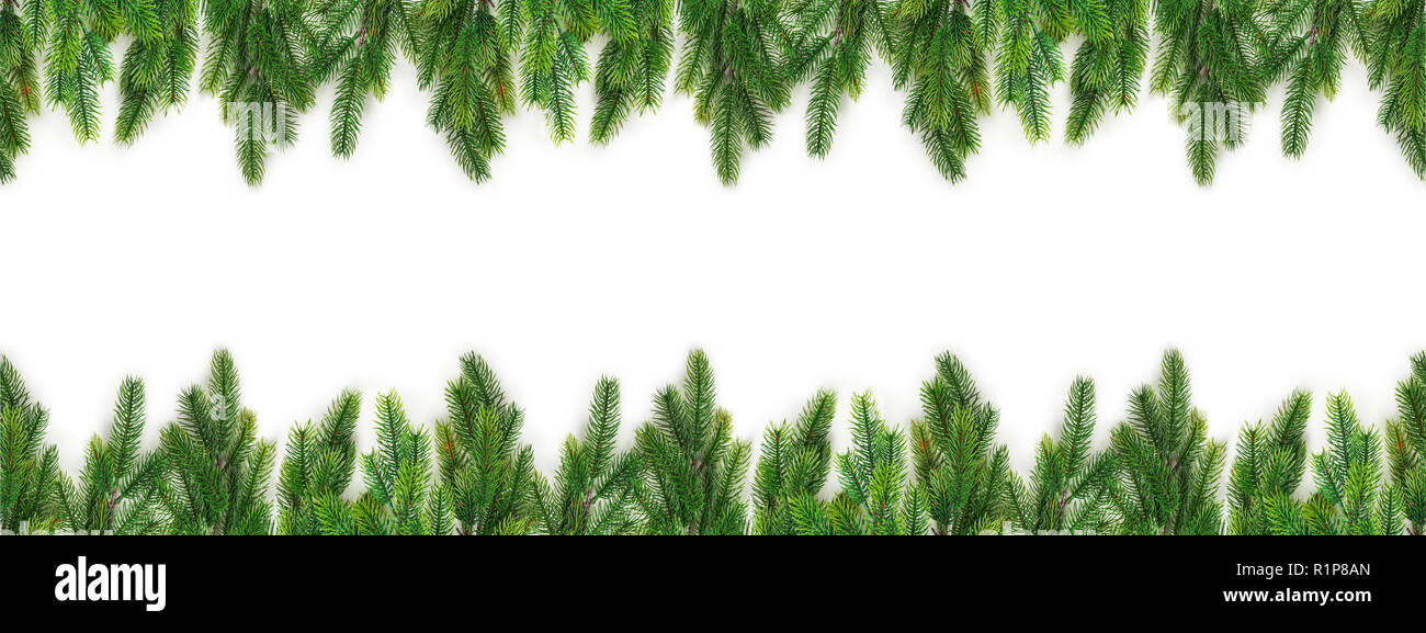 Christmas Tree Branches On White Background As A Border Or