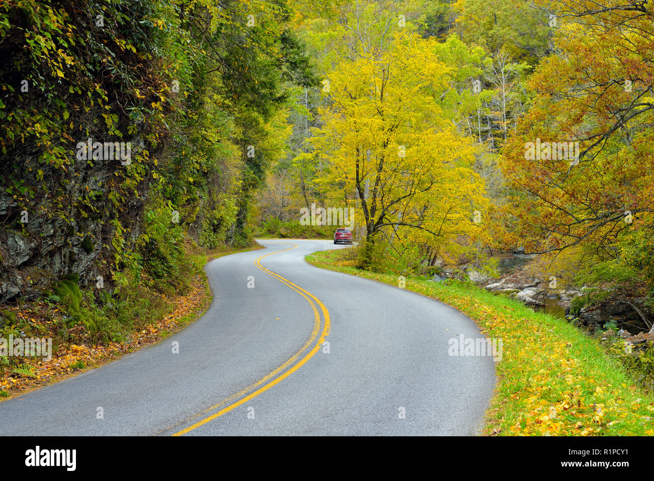 Little River Road in autumn, Great Smoky Mountains National Park, Tennessee, USA - Stock Image