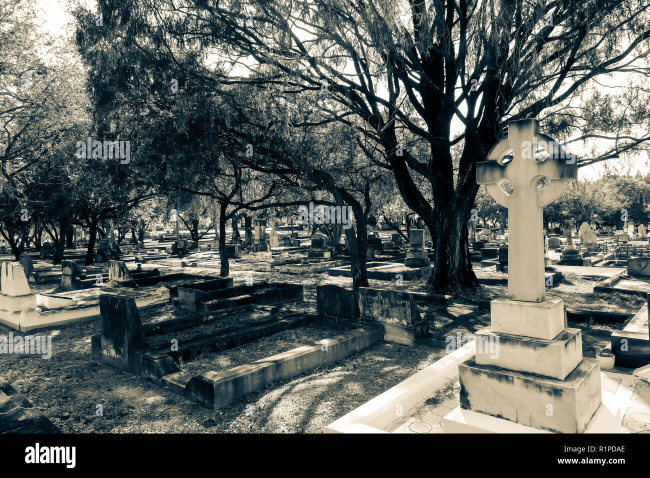 Cemetery view - Stock Image
