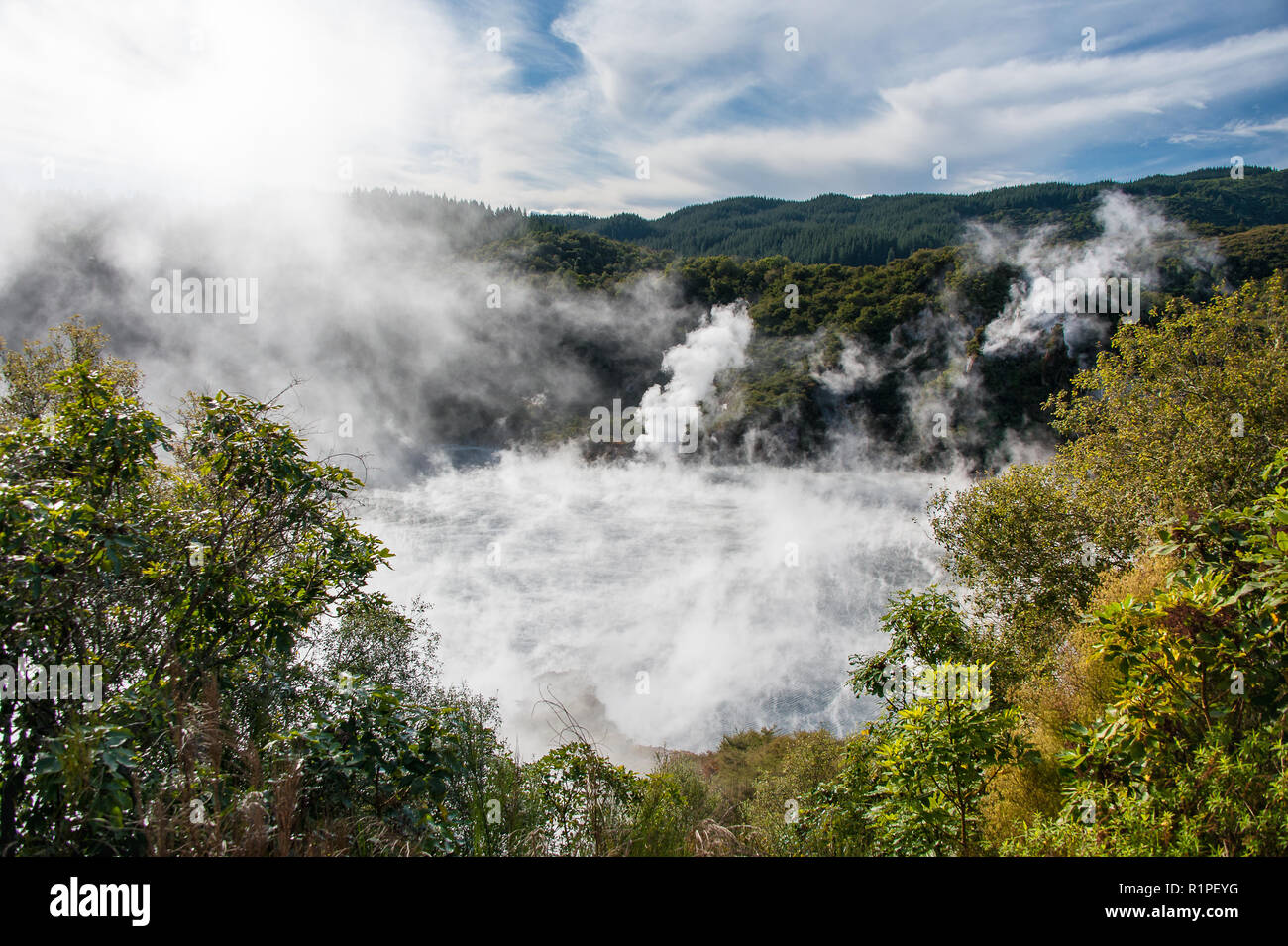 Frying Pan Lake, Waimangu Volcanic Valley, New Zealand. Steam rising over the lake creates a bubbling cauldron in a prehistoric forest landscape. - Stock Image