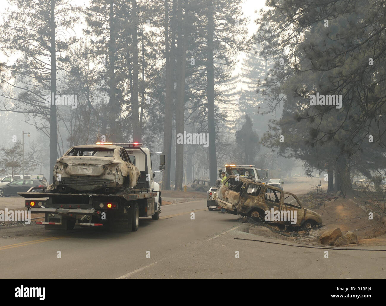 Paradise, USA. 13th Nov, 2018. Burnt out cars are removed from the roadside after the forest fire, the so-called 'camp' fire. Paradise has become a ghost town. Only fire engines and fire engines drive through the spooky landscape. Residents are not allowed to return for the time being. (to dpa 'Paradise as hell on earth - 'Will create a new church' of 14.11.2018) Credit: Barbara Munker/dpa/Alamy Live News - Stock Image