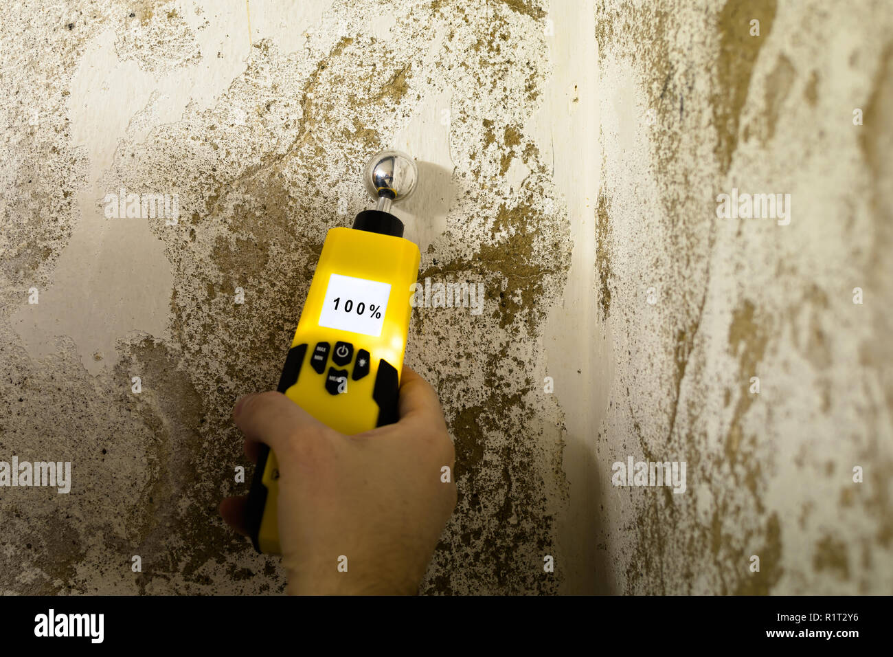 Person is measuring the humidity in a wet wall - Stock Image
